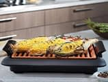 smokeless indoor electric bbq grill